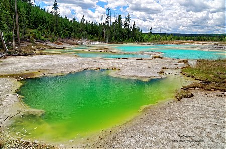 Au-bord-du-Cracking-lake-----Norris-geyser-basin---Yellowstone.jpg