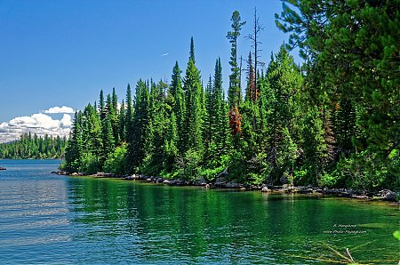 Au-bord-du-Jenny-Lake-Parc-national-de-Grand-Teton.jpg