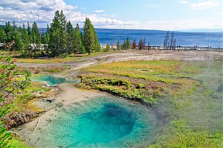 Bluebell_pool_-_West_Thumb_geyser_bassin_-_Yellowstone.jpg