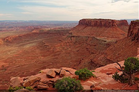 Canyonlands : paysage spectaculaire au bord de la falaise