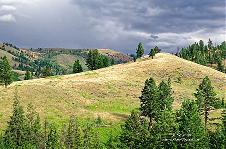 Colline-dans-le-parc-national-de-Yellowstone.jpg