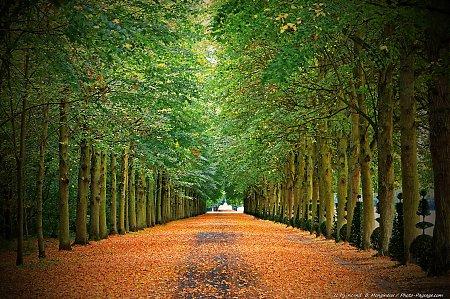 foto de Automne - Photo-Paysage.com Photo-Paysage.com