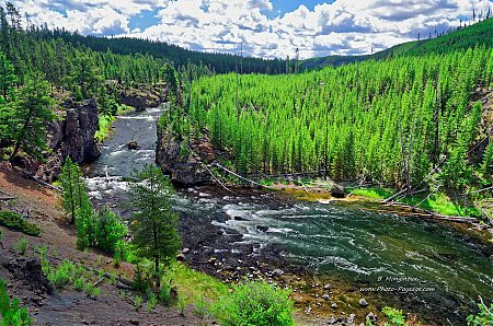 Firehole-river-1.jpg