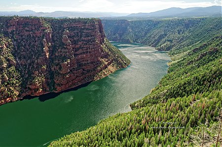 Flaming Gorge & Ashley national forest