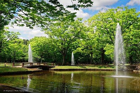 foto de Lacs, étangs... - Photo-Paysage.com Photo-Paysage.com