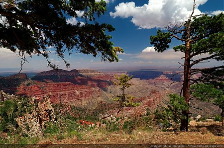 Grand-Canyon-depuis-Point-Imperial.jpg