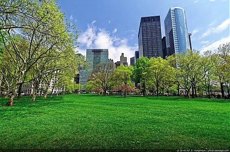 Grande pelouse dans Battery Park