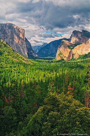 La-vallee-de-Yosemite-photographiee-depuis-Tunnel-View.jpg