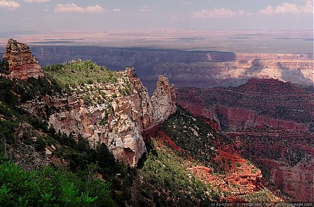 Le-Grand-Canyon-vu-depuis-Roosevelt-Point.jpg