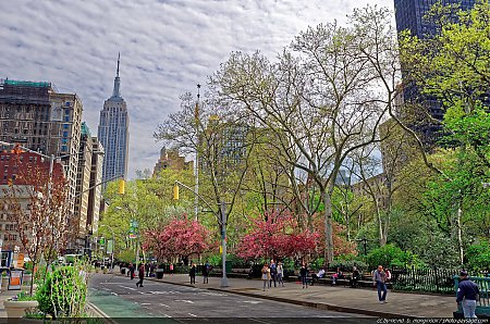Le-Madison-Square-Park-et-l_Empire-State-Building-vus-depuis-la-5deg-avenue.jpg