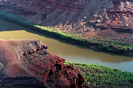 Le fleuve du Colorado au contrebas de Dead Horse Point