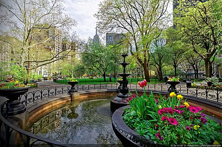 Le-printemps-a-Madison-Square-park---2.jpg