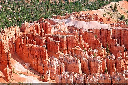 Les Hoodoos vus depuis Bryce Point