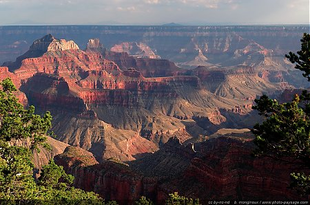 Les-couleurs-du-Grand-Canyon.jpg