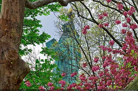 Les couleurs du printemps sur Liberty Island