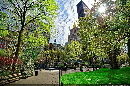 Madison Square Park