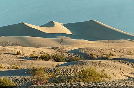 Mesquite Sand Dunes