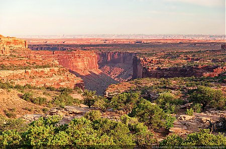 Neck-Springs-Parc-National-de--Canyonlands.jpg