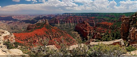 Panorama-sur-Grand-Canyon-North-Rim.jpg