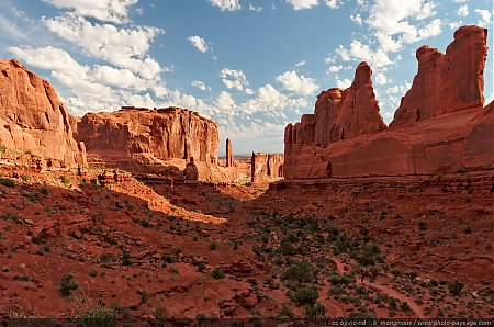 Park Avenue