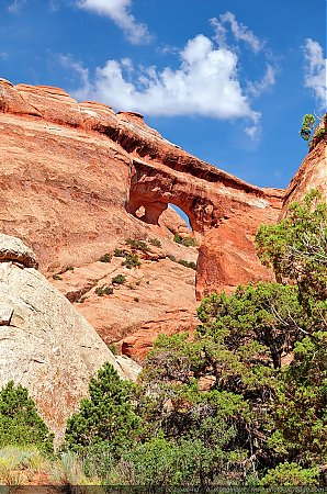 Partition Arch