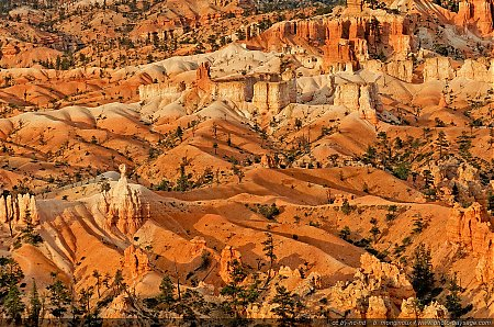 Les paysages de Bryce Canyon