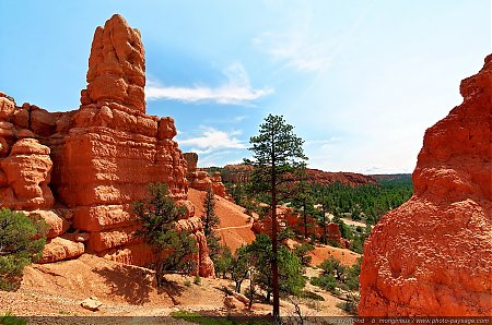Red-Canyon---01.jpg