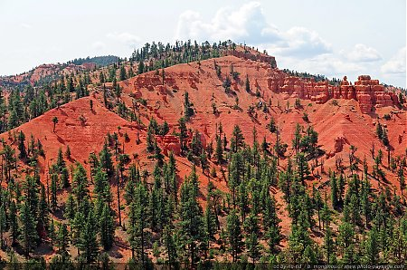 Red-Canyon---04.jpg