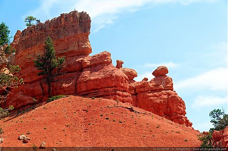 Red-Canyon---06.jpg