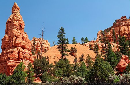 Red-Canyon---11.jpg