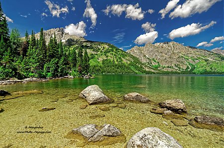 Sur la rive du Jenny Lake