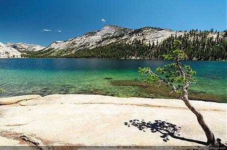 Tenaya lake