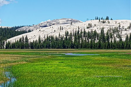 Tuolumne-Meadows-Yosemite-California.jpg