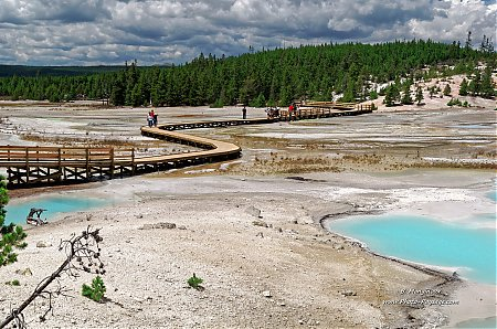 Une-passerelle-traversant-les-sources-thermales-de-Norris-geyser-basin---Yellowstone.jpg