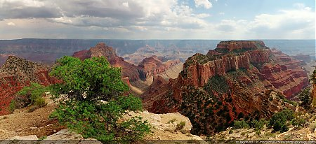 Grand Canyon : vue panoramique depuis Cape Royal