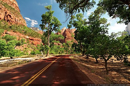 Zion - Scenic Drive