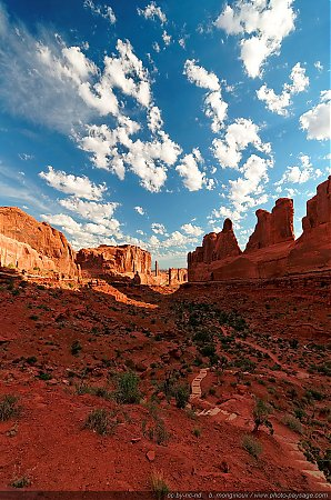 Le sentier qui traverse Park Avenue