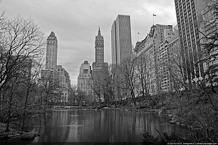 nyc-central-park-the-pond.jpg