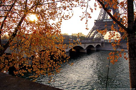 paris-seine-tour_eiffel.JPG