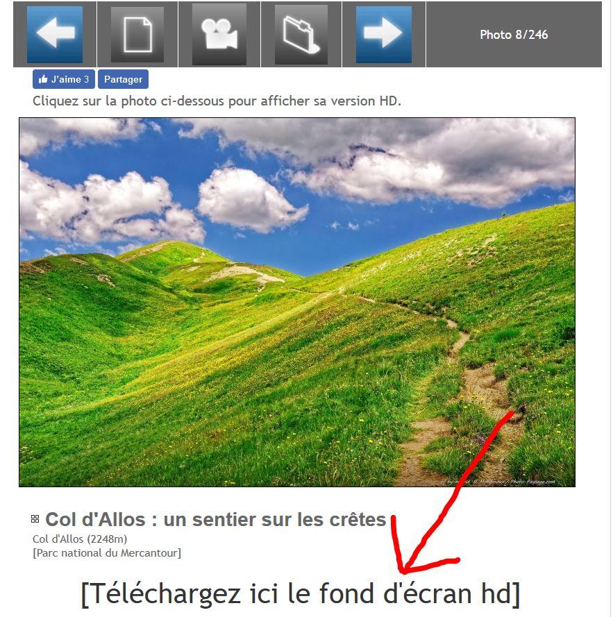 Telecharger Le Dossier D Activit Ef Bf Bd A Imprimer Caf